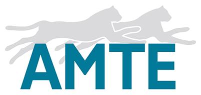 logo-amte-e1627048876896